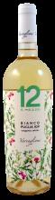 12 e mezzo, BIO, Bianco di Puglia | Weißwein aus Apulien