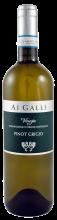 Ai Galli, Pinot Grigio, Venezia DOC | Weißwein aus Venetien